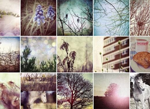 my textured photos