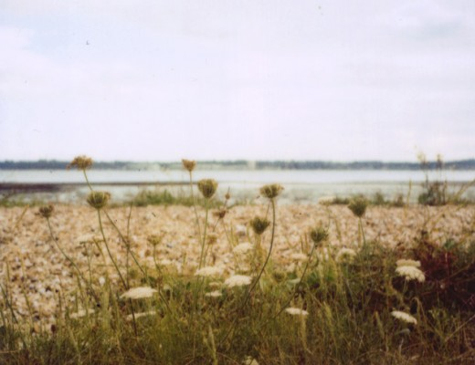 polaroid - Weston Shore, Southampton