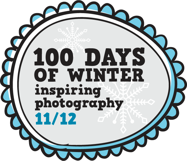100 days of winter - panel