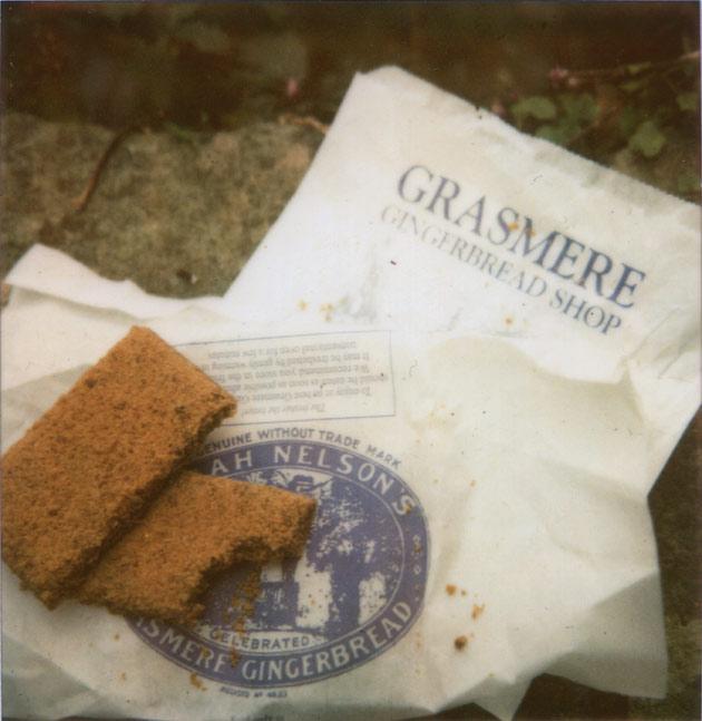 polaroid - grasmere gingerbread