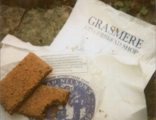 polaroid - grasmere gingerbread