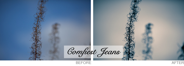lightroom preset - comfiest jeans