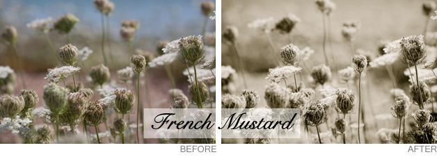 lightroom preset - french mustard