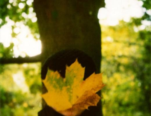 me with a leaf - polaroid