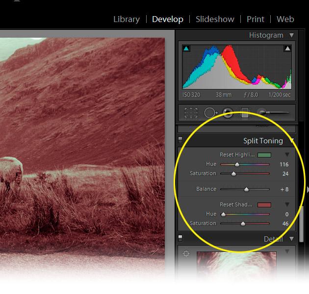 http://www.angiemuldowney.com/wp-content/uploads/2011/11/split-tone-panel.jpg