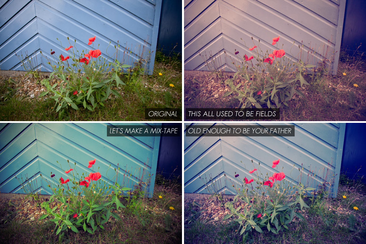 instagram style photoshop actions - poppies