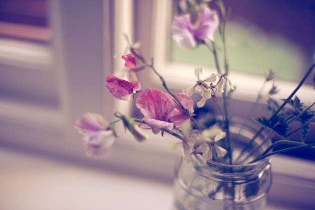 sweet peas - with instagram effect