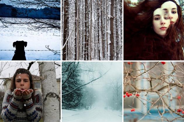 100 days of winter - flickr photos