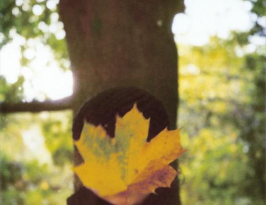 me-leaf