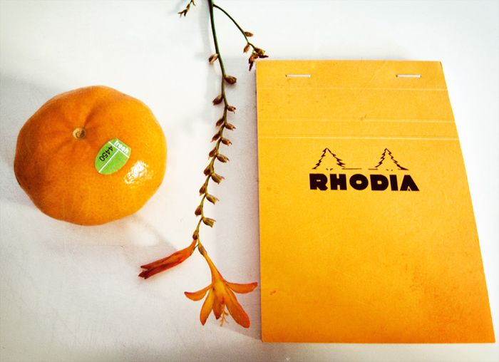 tangerine, flower and notebook