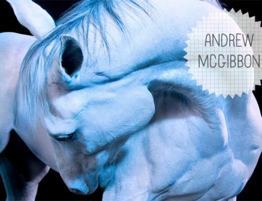 andrew-mcgibbon