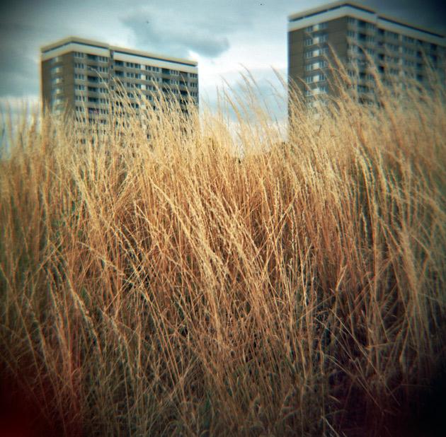 Shoreside Southampton - Diana F+