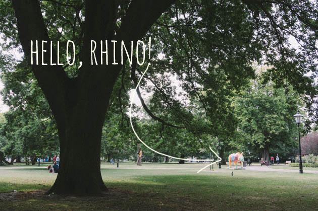 hello, rhinos!