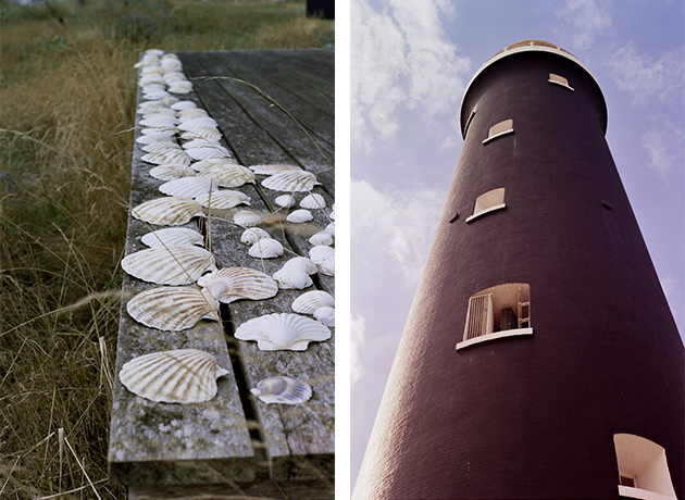 shells and lighthouse