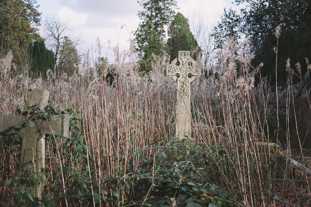graves amongst the reeds