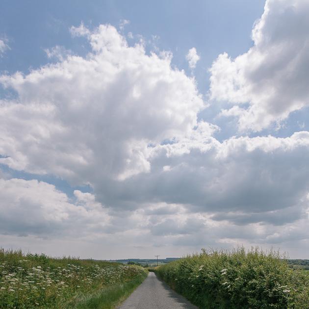 big skies and hedgerows