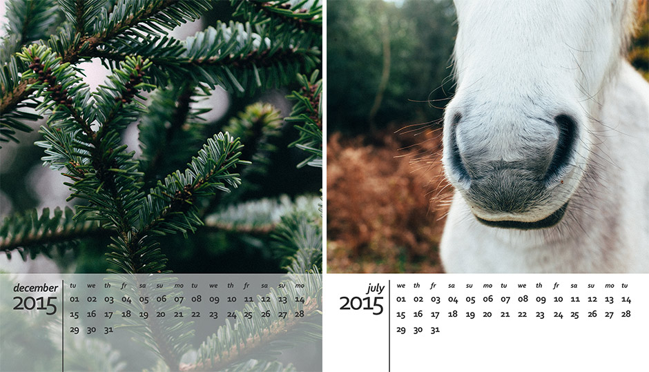 A Free 2015 Calendar Template For Photoshop Angie Muldowney