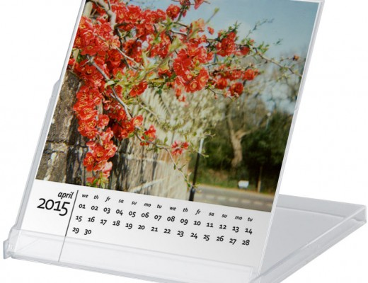 free-2015-calendar-in-cd-case