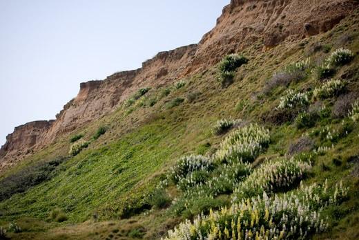cliff-canon-40d