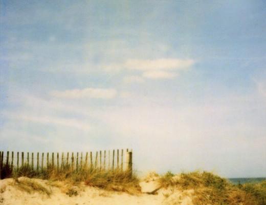 pola-dune