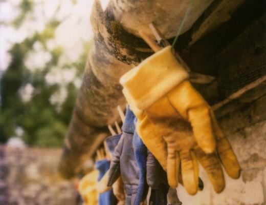 pola-gloves