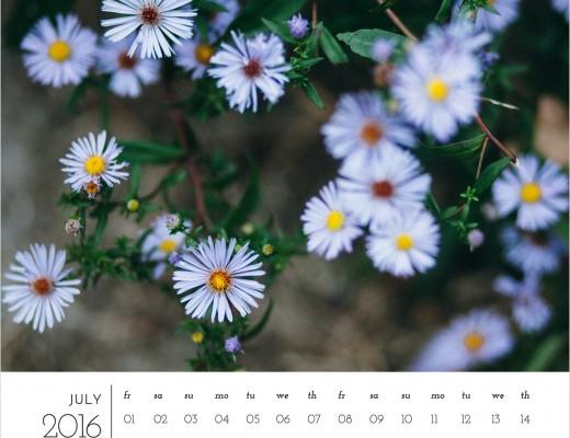 2016 free calendar